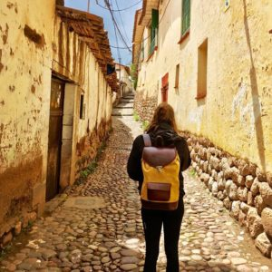 sac à dos joe safari pachamama cusco city trip ville urbain voyage fonctionnel pratique cuir velours